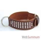 collier terrier cuir dble cuir 60mm l65 a 75cm 4rgs clous coniques sellerie canine vendeenne 83573