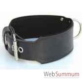collier terrier cuir pfleur double cuir 105 mm 80 90cm sellerie canine vendeenne 83595