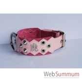 collier dent cuir plfleur dble nub 60mm l60 75cm chinoispointes sellerie canine vendeenne 83884