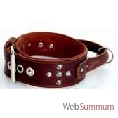collier inter cuir cble nubuck 58mm l70 80cm clous ogives poignee ro sellerie canine vendeenne 83981