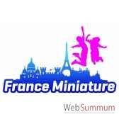 pass paradiloisirs france miniature mer de sable parc asterix grevin pass famille annuel