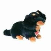 peluche chien teckenoir hermann teddy collection 28cm 92753 2