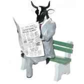 cow parade harrisburg 2004 artiste jeff walker citizen cow 41565