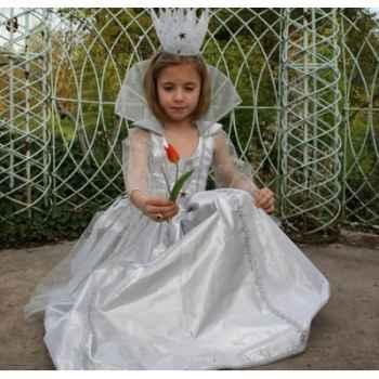 Costume Robe de lune argent Peau d'Ane 8ans complète