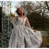 costume robe de lune argent peau d ane 10ans complete