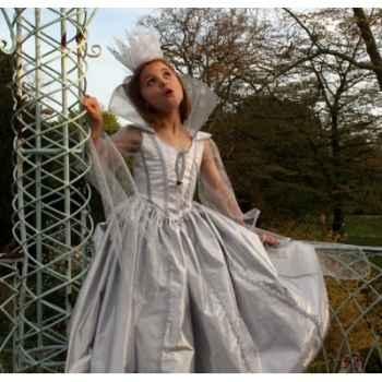 Costume Robe de lune argent Peau d'Ane 10ans complète