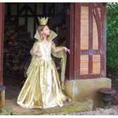 costume robe de soleipeau d ane 10ans complete