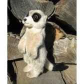 peluche suricate dresse 24cm haut ushuaia junior 209