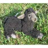peluche agneau noir couche 33cm long anima 5973