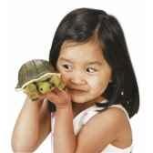 marionnette a doigt mini peluche tortue folkmanis 2732