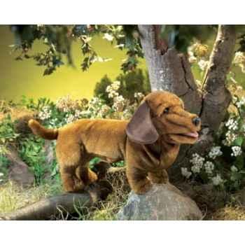 Marionnette peluche chien dachshund folkmanis 2878
