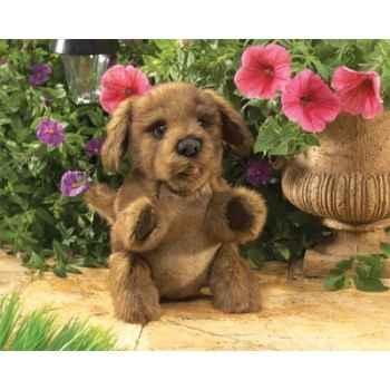 Marionnette peluche petit chien marron folkmanis 2915