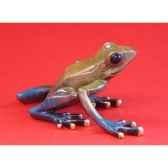 figurine grenouille fabulous forest frogs grenouille wu710358