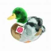 peluche canard colvert 24 cm hermann 93131 7