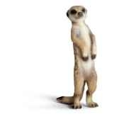 schleich 14368 figurine suricate debout