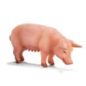 schleich 13288 porc debout