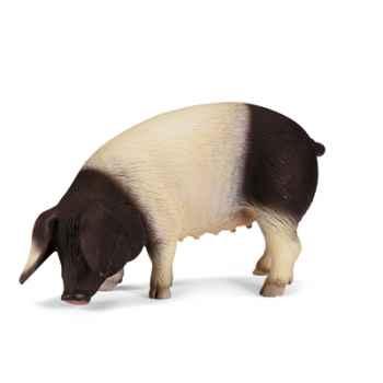 schleich-13612-Porc de Souabe