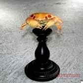 crabe a pois objet de curiosite an063