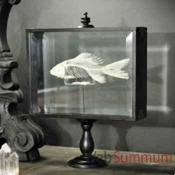 Squelette de poisson Objet de Curiosité -AN132