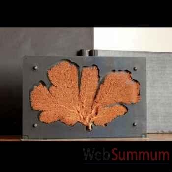 Gorgone rouge Objet de Curiosité -VE020
