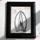 tableau squelette de baleine objet de curiosite ta036