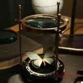 loupe a magnifier un papillon objet de curiosite da065bis