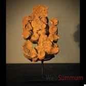 stromatolithe objet de curiosite fo017
