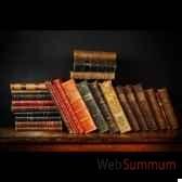 livres anciens reliure cuir objet de curiosite liv002