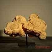 stromatolithe objet de curiosite fo019