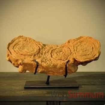 Stromatolithe Objet de Curiosité -PUFO120