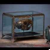 boite rectangle gm verres biseautes objet de curiosite va020