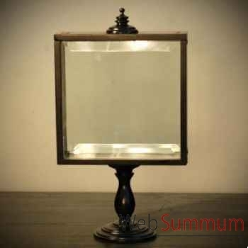 Boite vitrée Objet de Curiosité -DA121