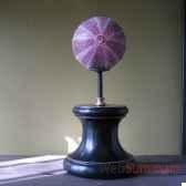 oursin sur socle objet de curiosite an007
