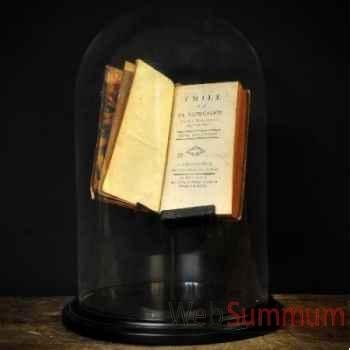 Livre ancien sous globe Objet de Curiosité -LIV012