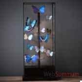 globe papillons bleus objet de curiosite in039
