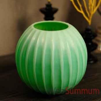 Vase cactus vert Objet de Curiosité -VA029