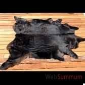 peau de vache noire objet de curiosite an029
