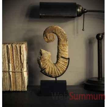 Ammonite déroulée de 24cm Objet de Curiosité -PUFO158