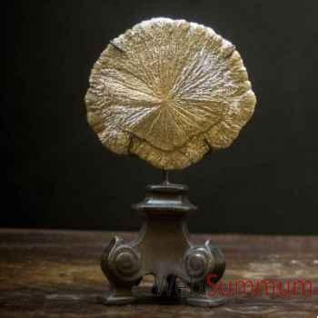 Pyrite dollar Objet de Curiosité -MI033
