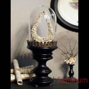 Collier de strombus anciens (irian jaya) Objet de Curiosité -PU437-1