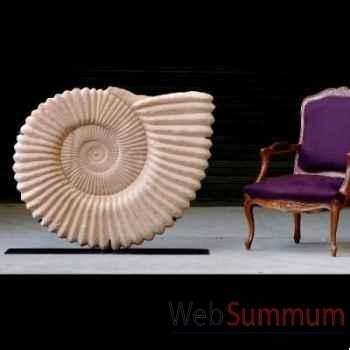 Ammonite géante Objet de Curiosité -PU161