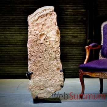 Stromatolithe Objet de Curiosité -PUFO127
