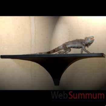 Iguane Objet de Curiosité -PU252