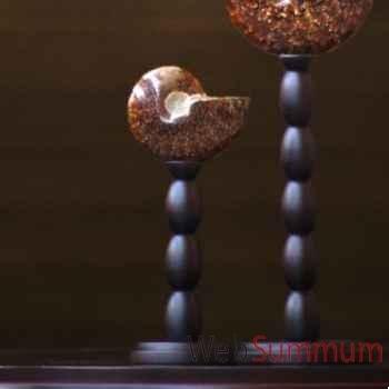 Ammonite opalinisée clioniceras Objet de Curiosité -FO007