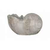 vase en forme de coquille d039escargot rochers diffusion ce 70