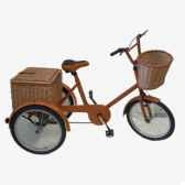 tricycle en cuir soluna pntri
