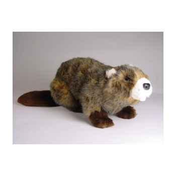 Peluche allongée castor 45 cm Piutre -2659