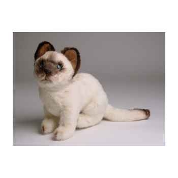 Peluche assise chat siamois 23 cm Piutre -2349