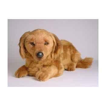 Peluche allongée teckel dachshund, poils longs 35 cm Piutre -2255
