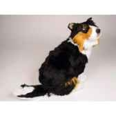 peluche assise shetland sheepdog 50 cm piutre 3320